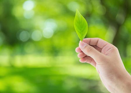 環境保全に対する取組み | ロート製薬株式会社